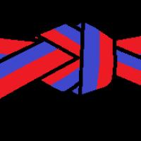 Der blaurote Gürtel ist ein Übergang. (3. Kup)