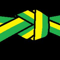 Der gelbgrüne Gürtel ist ein Übergang. (7. Kup)